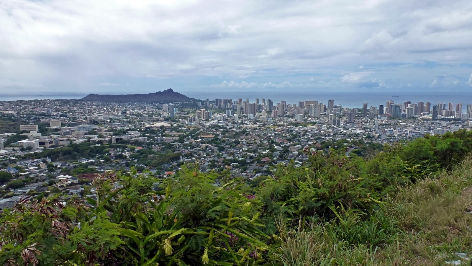 View of Honolulu on way to Pu'u Ualaka'a State Park.